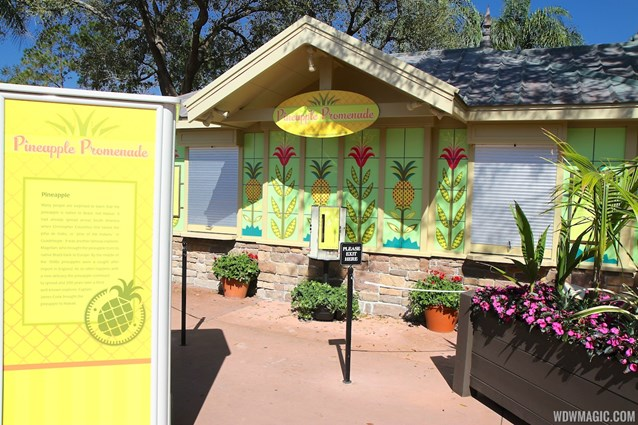 Epcot International Flower and Garden Festival - 2013 Epcot Flower and Garden Festival - Garden Marketplace - Pineapple Promenade kiosk