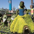 Epcot International Flower and Garden Festival - 2013 Epcot Flower and Garden Festival - Snow White topiary