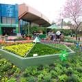 Epcot International Flower and Garden Festival - 2014 Epcot Flower and Garden Festival - Gardener's Palette exhibit