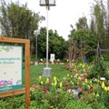 Epcot International Flower and Garden Festival - 2014 Epcot Flower and Garden Festival - Hummingbirds at Home exhibit