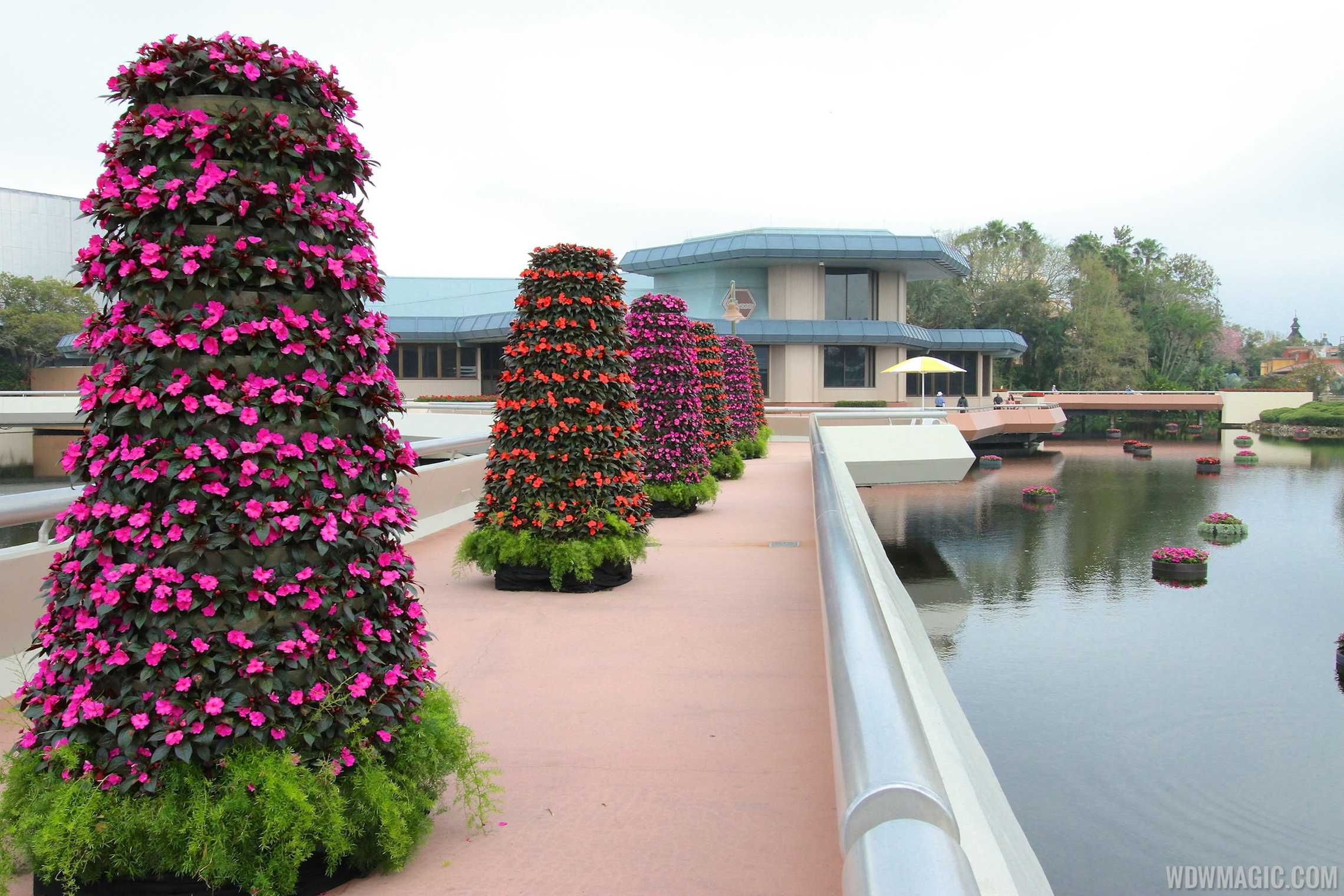 2014 Epcot International Flower And Garden Festival Opening Day Tour Photo 34 Of 82