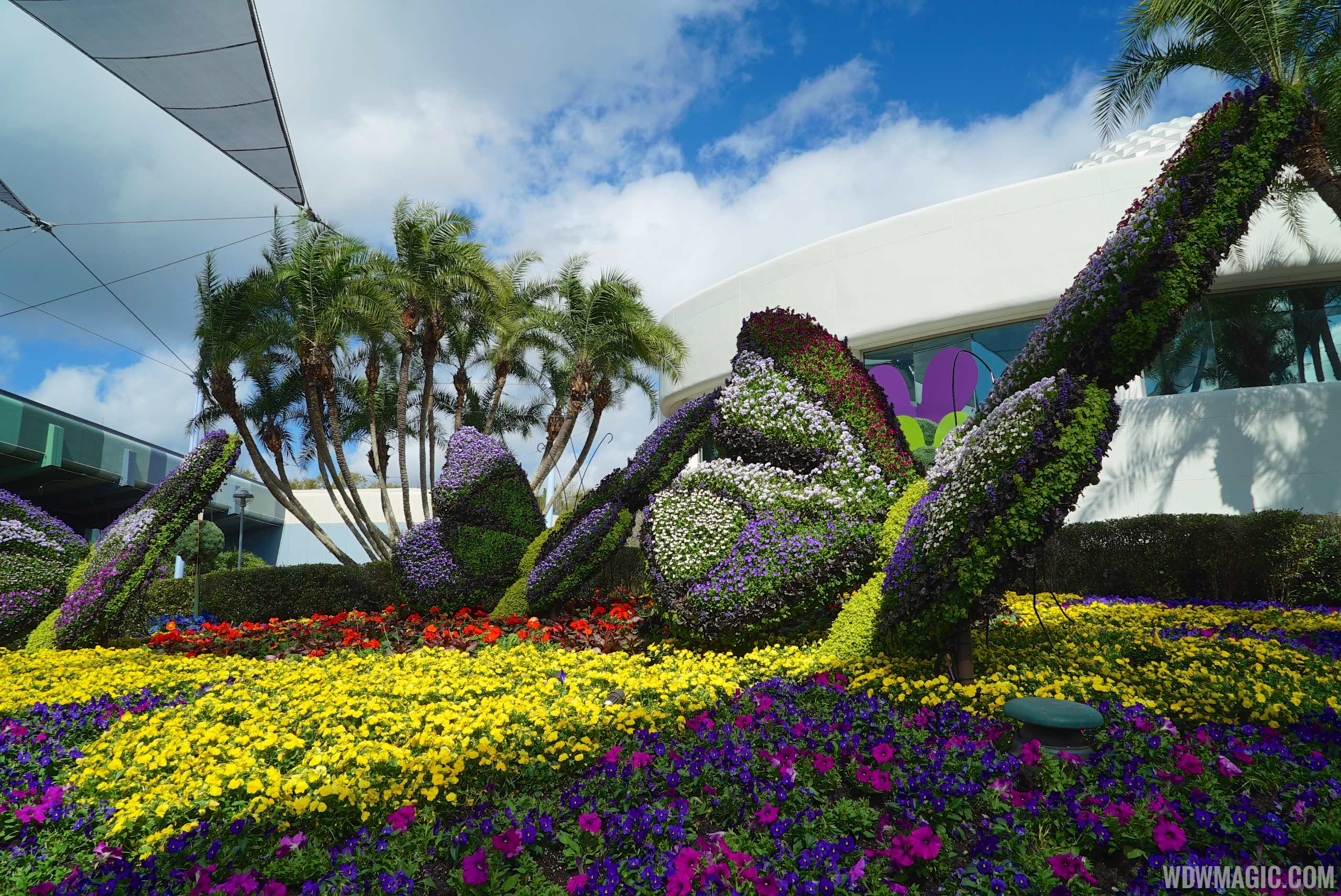2015 Epcot International Flower And Garden Festival Opening Day Tour Photo 12 Of 74