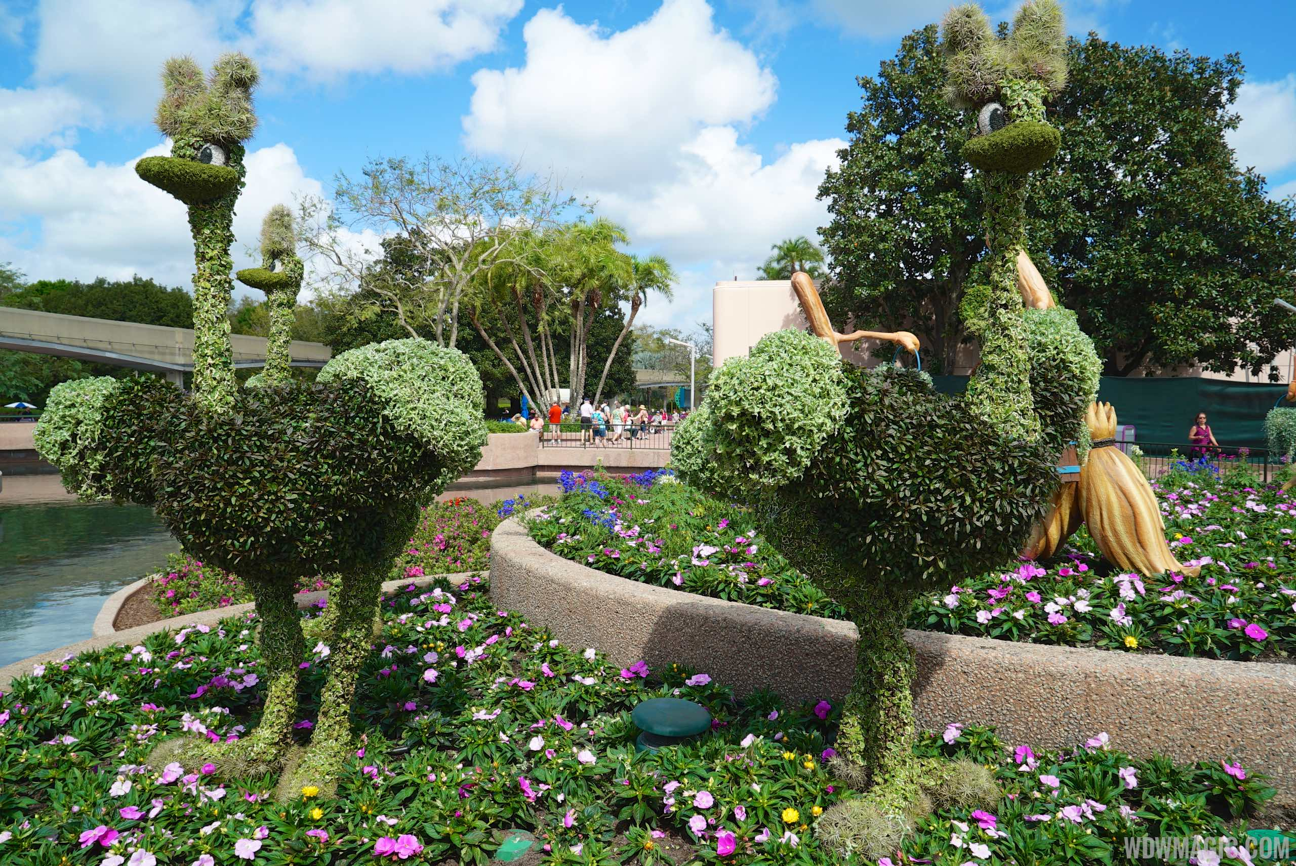 2015 Epcot International Flower And Garden Festival Opening Day Tour Photo 30 Of 74