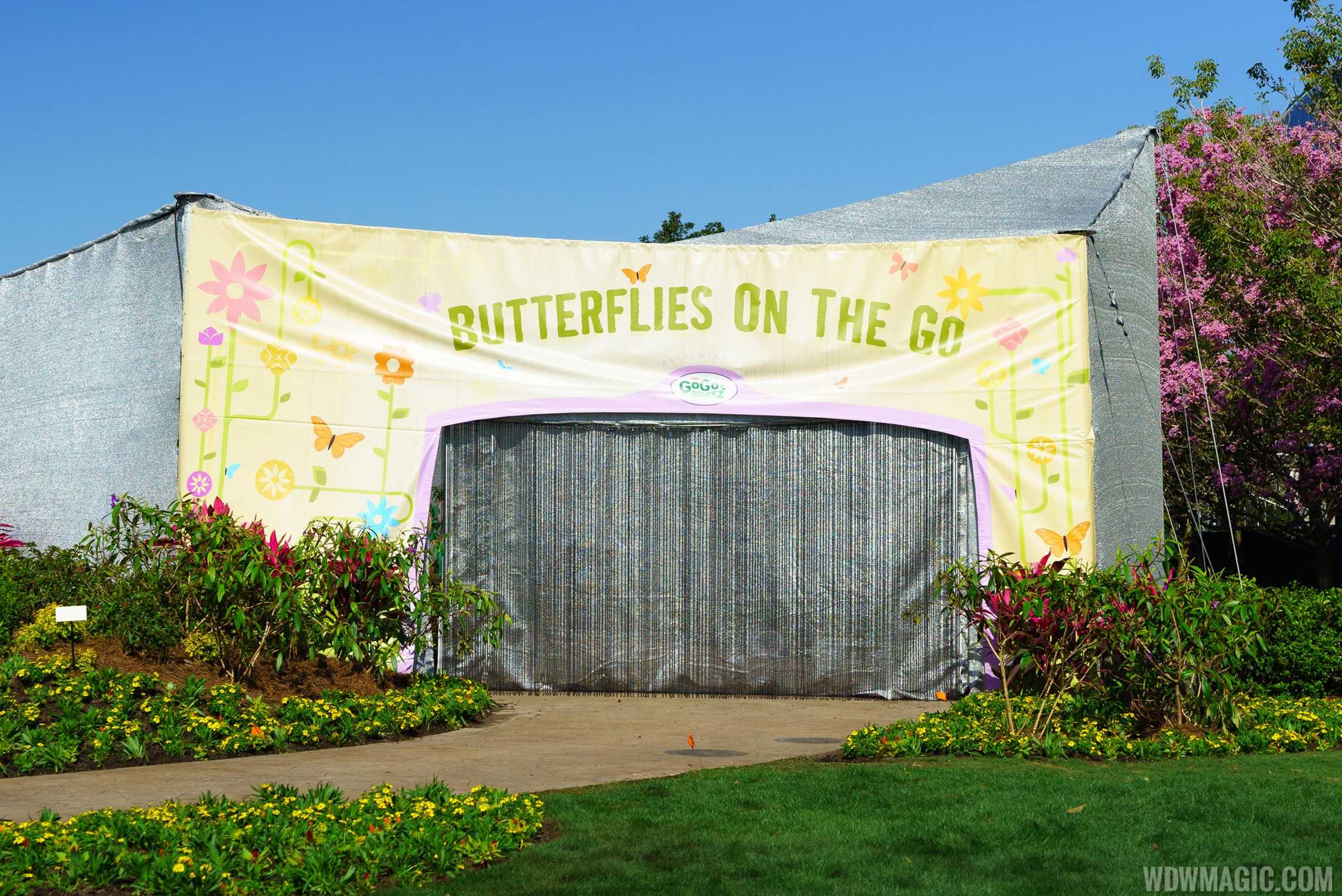 2016 Epcot International Flower and Garden Festival - Butterflies on the Go
