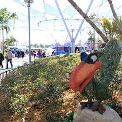 2010 International Flower and Garden Festival preparations