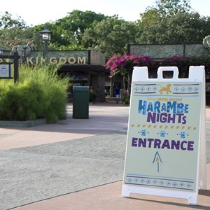 1 of 24: Harambe Nights - Harambe Nights - Main entrance signage