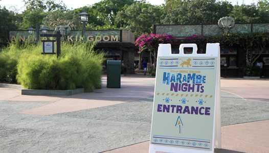 REVIEW - 'Harambe Nights' at Disney's Animal Kingdom
