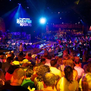 14 of 24: Harambe Nights - Harambe Nights - Inside the Harambe Theater