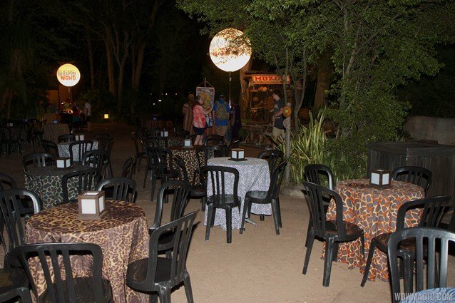 Harambe Nights - Harambe Nights - Outdoor seating