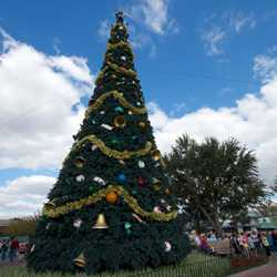 Epcot 2012 Christmas Trees