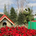 Holidays Around the World at Epcot - Epcot Main entrance decorations for 2012 - Pluto Topiary on the bridge to World Showcase