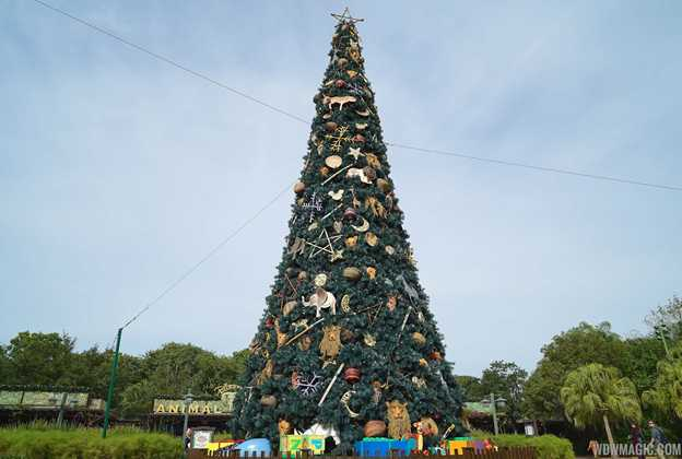 Disney's Animal Kingdom holiday decorations 2014