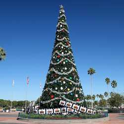 Disney's Hollywood Studios holiday decorations 2011