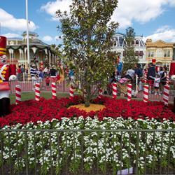 Holidays decorations at the Magic Kingdom 2012