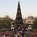 Holidays at the Magic Kingdom - The Christmas tree viewed from the Train Station balcony