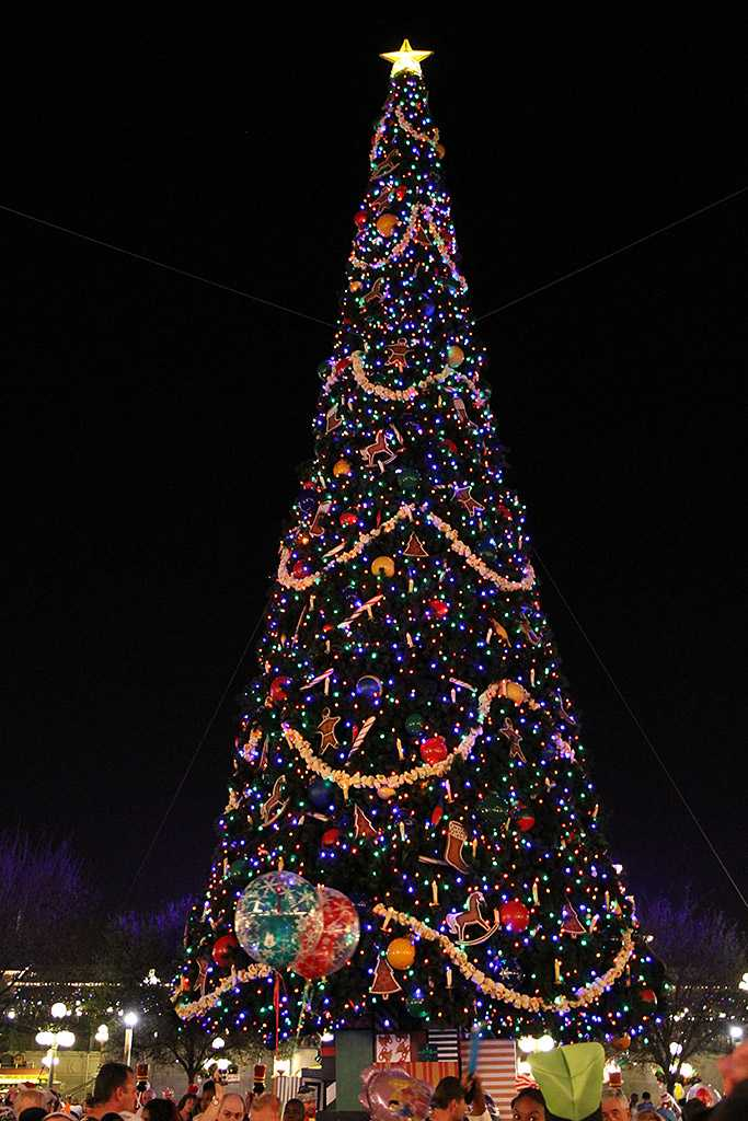 Holidays decorations and christmas tree at the Magic ...