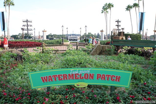 Epcot International Food and Wine Festival - 2012 International Food and Wine Festival kiosks - The Watermelon patch