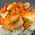 International Food and Wine Festival - Brazil Marketplace 2013 - Seared Scallop with Hearts of Palm and Tomato Stew