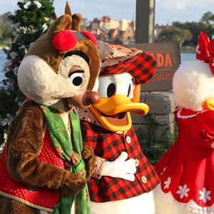 6 of 11: Limited Time Magic - Limited Time Magic - Winter Wonderland character meet and greet at Epcot's Canada Pavilion