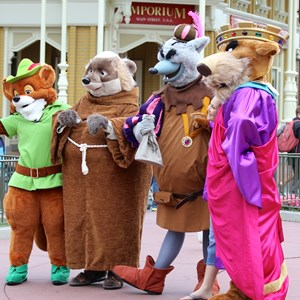 6 of 12: Limited Time Magic - Limited Time Magic - Long-lost Disney friends - Robin Hood unit