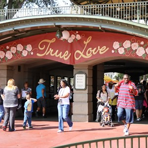 1 of 12: Limited Time Magic - Limited Time Magic True Love week - Main Entrance banner