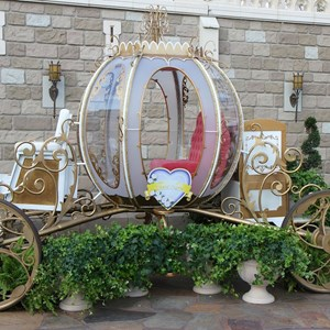 4 of 12: Limited Time Magic - Limited Time Magic True Love week - Cinderella Coach photo opportunity in Fantasyland