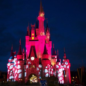 12 of 12: Limited Time Magic - Limited Time Magic True Love week - Cinderella Castle blushing light effect