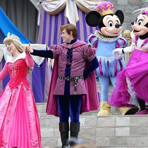 5 of 18: Limited Time Magic - Limited Time Magic's True Love Week - 'A Celebration of True Love' - Princess Aurora