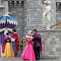 Limited Time Magic - Limited Time Magic's True Love Week - 'A Celebration of True Love' - Disney Princesses