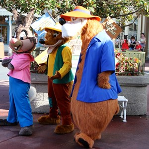 4 of 17: Limited Time Magic - Limited Time Magic - Long Lost Disney Friends Week 2 - Brer Bear, Brer Fox and Brer Rabbit