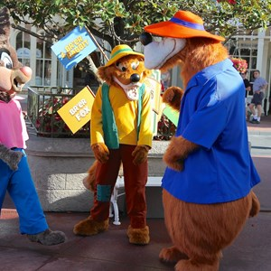 5 of 17: Limited Time Magic - Limited Time Magic - Long Lost Disney Friends Week 2 - Brer Bear, Brer Fox and Brer Rabbit