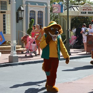 15 of 17: Limited Time Magic - Limited Time Magic - Long Lost Disney Friends Week 2 - Brer Bear, Brer Fox and Brer Rabbit
