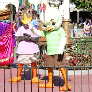 8 of 17: Limited Time Magic - Limited Time Magic - Long Lost Disney Friends Week 2 - Chicken Little and Abby Mallard