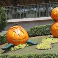 Mickey's Not-So-Scary Halloween Party - Magic Kingdom's 2013 Halloween decorations - Main entrance pumpkins