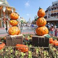 Mickey's Not-So-Scary Halloween Party - Magic Kingdom's 2013 Halloween decorations - Pumpkin PhotoPass spot