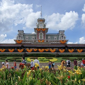 1 of 18: Mickey's Not-So-Scary Halloween Party - Halloween decorations installation