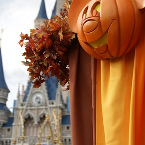 5 of 18: Mickey's Not-So-Scary Halloween Party - Halloween decorations installation