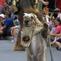 Star Wars Weekends - Chewbacca and Ewok