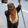 Star Wars Weekends - Ewok
