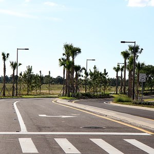 8 of 30: Flamingo Crossings - Flamingo Crossings roads open