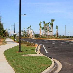 12 of 30: Flamingo Crossings - Flamingo Crossings roads open