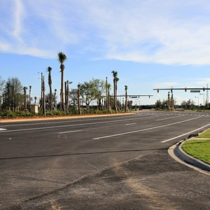 13 of 30: Flamingo Crossings - Flamingo Crossings roads open