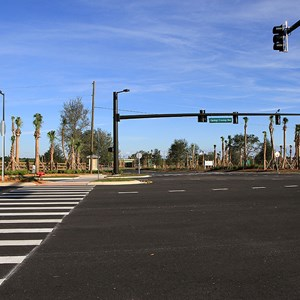 17 of 30: Flamingo Crossings - Flamingo Crossings roads open