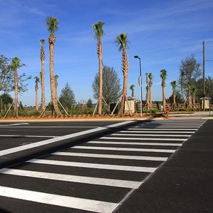 18 of 30: Flamingo Crossings - Flamingo Crossings roads open