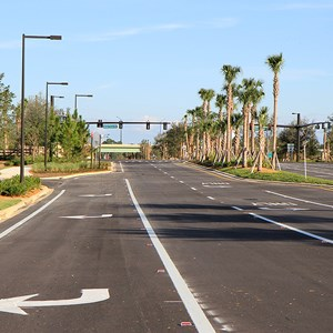 21 of 30: Flamingo Crossings - Flamingo Crossings roads open