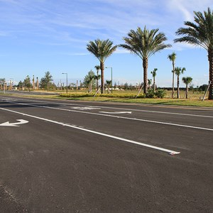 24 of 30: Flamingo Crossings - Flamingo Crossings roads open