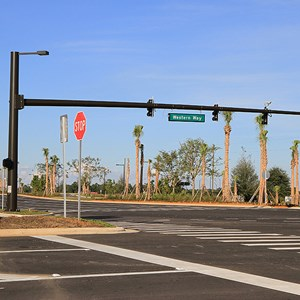28 of 30: Flamingo Crossings - Flamingo Crossings roads open