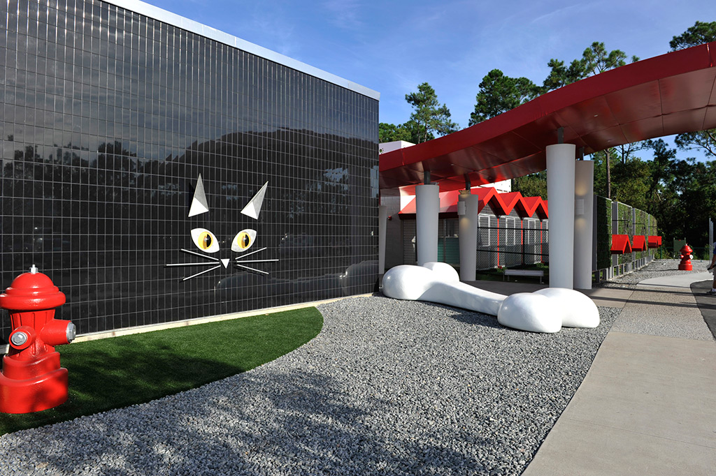 Best friends luxury pet resort opening day photo 1 of 4 for Dog kennels near disney world