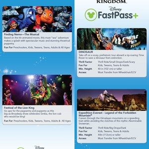 3 of 4: MyMagic+ - FastPass+ guide for non-resort guests