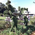 iPhone 4 Goes to Walt Disney World